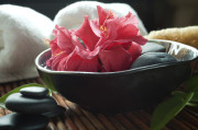 Schale mit Blüte, Praxis für Hypnotherapie und Coaching Nidda